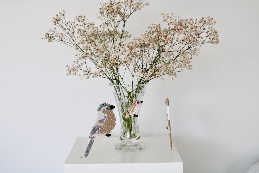perleplader fugle